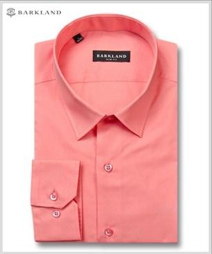 Мужская рубашка 1203 BSF BARKLAND приталенная - фото 6796
