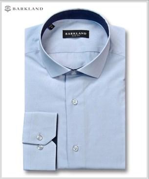 Мужская рубашка 20195 BSF BARKLAND приталенная - фото 6813