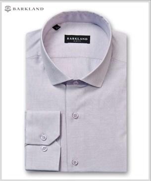 Мужская рубашка 20247 BSF BARKLAND приталенная - фото 6828