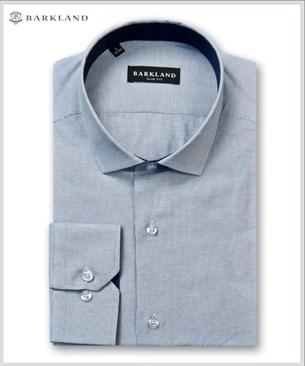 Мужская рубашка 20249 BSF BARKLAND приталенная - фото 6829