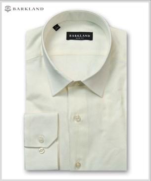 Мужская рубашка 20258 BSF BARKLAND приталенная - фото 6833