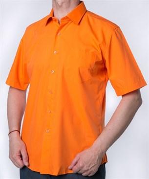 Оранжевая прямая рубашка BROSTEM CVC55s - фото 9971