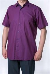 р.М(39-40) Прямая рубашка BROSTEM 9SBR15+6SP